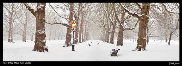 First Snow, Green Park, London