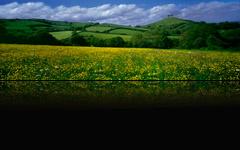 Dorset Hills, England